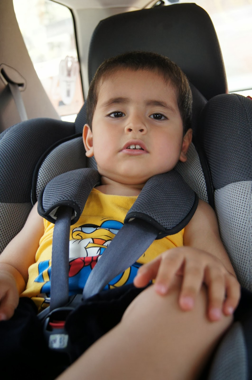 El cintur n de seguridad para ni os y embarazadas la for Silla de seguridad para bebes